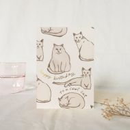 Wanderlust Paper Co. 'Birthday Cats' Card